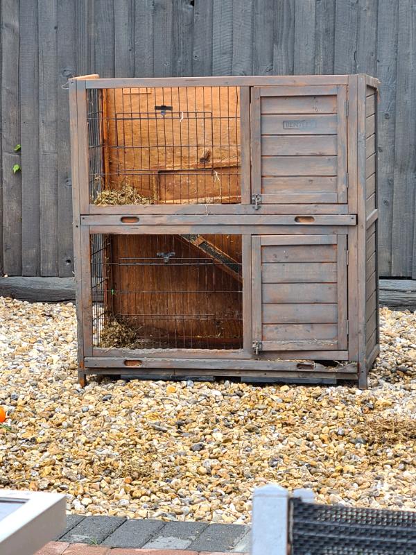 Rabbit huch   in Portsmouth, Hampshire   Gumtree
