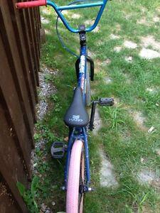 Custom BMX!!! Kawartha Lakes Peterborough Area image 8