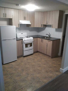 Beautifully Renovated Bachelor Suite! Great Downtown Location!