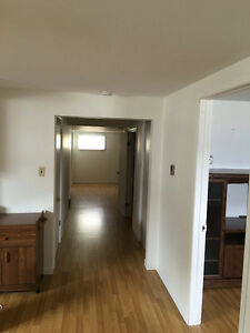 large clean one bedroom apt. in great location