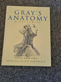Gray's Anatomy Facsimile Book