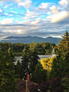 LARGE 1 BEDROOM SUITE WITH VIEW OF PARK WEST OF DENMAN