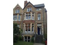 Single room in shared house in North Oxford (15 mins city centre), available mid March.