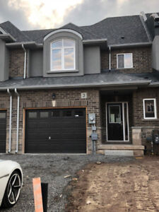 NEW Townhome for Rent in Stoney Creek/Winona Area