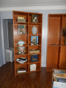 Pair of Huge Bookcases or Storage Units