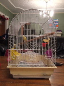 2 Budgie's and Cage For Sale