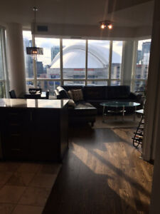 2 Bed / 2 Bath Downtown Waterfront Condo 900  Sq ft - $3300