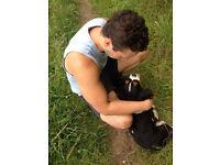 Dog Walker/Pet Sitter around Brandon/Thetford area