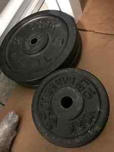 York Cast Iron and Vinyl Weight 1 inch barbell