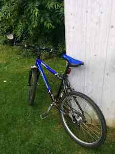 Jamis Cross Country Mountain Bike