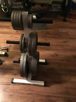 Northern Lights Weight Rack and Olmpic Plates
