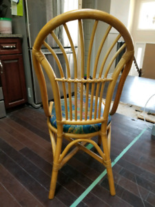 Wicker style dinning chairs