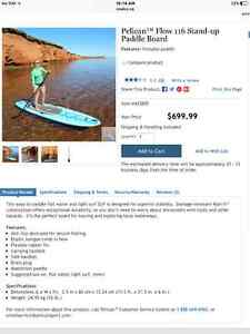 NEW NEW NEW paddle board