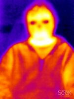 Thermal camera audits.