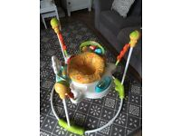 Fisher Price - Sunny Days Jumperoo - Perfect Condition