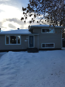 Updated split level for sale in Hillcrest area