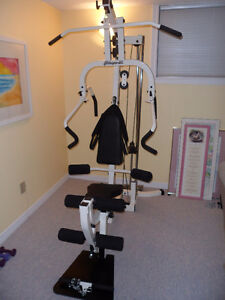 Complete Home Gym London Ontario image 1