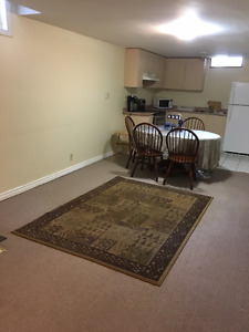 Clean Spacious 2 br. Lower Level Unit in heart of Richmond Hill