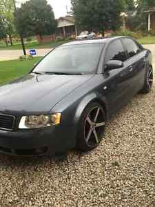 2002 Audi A4 Sedan 1.8T Quattro with upgrades Kitchener / Waterloo Kitchener Area image 6