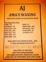 PROFESSIONAL WAXING (LADIES ONLY) $55 Full Body