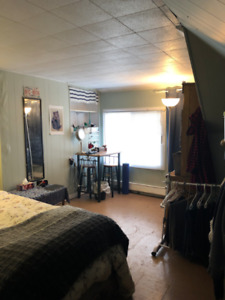 Summer Sublet May-August