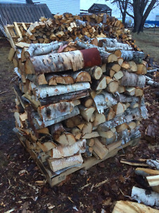 Fire wood for camping or firepit