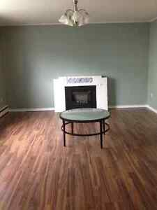 Large 2 Bedroom Basement Apartment