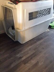 Giant XXL Dog Kennel - very good condition