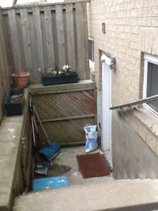 **** Thornhill Walk-up basement for rent- Hwy7-Bathurst********