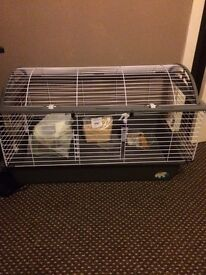 Large rabbit cage and accessories
