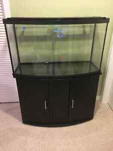 45 gal. bowfront tank, stand & lid