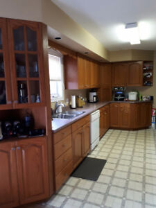 Kitchen cabinets and laminate countertop