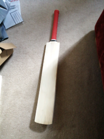 English willow cricket bat. Used twice slight scuff. collection only