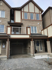 Brand New Home for Rent in Milton