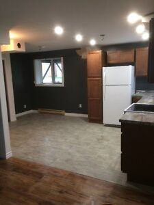 Newly Renovated One Bedroom Apartment in Airport Heights St. John's Newfoundland image 10