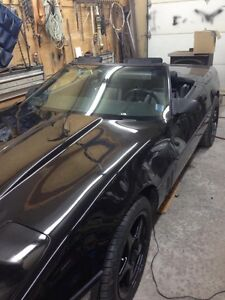 BLACK BEAUTY  CORVETTE