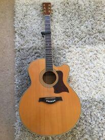 Tanglewood TW55 DLX Electro-acoustic