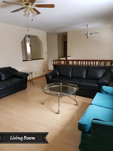 Main Floor House  for Rent-Rosevear Area