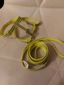 REFLECTIVE CAT/PUPPY/FERRET HARNESS USED (Pets at home)