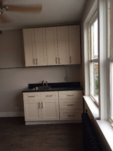 Moden Renovated Studio Suite - Available Dec.1 Prince George British Columbia image 4