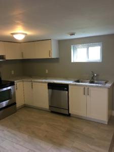 Fully Renovated Legal 2 BR Basement Apt - North St Catharines
