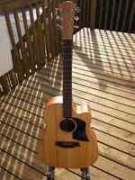 Guitare Cole Clark FL1AC