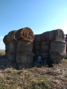 Round bales of hay.
