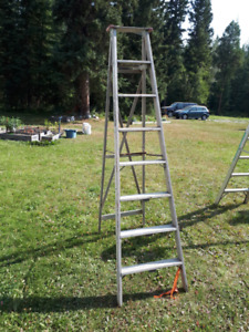painting ladders for sale