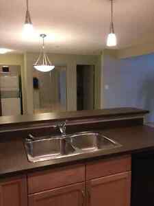 SW condo 1 month free rent pet friendly