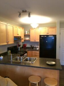 Available December 1st, one bedroom apt in Dieppe
