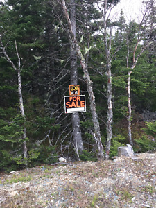 Lot for Sale - Golden Gullies / Gould's Big Pond