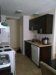 AB 1bdr, fully furnished, bedding, dishes, towels, wifi, pets