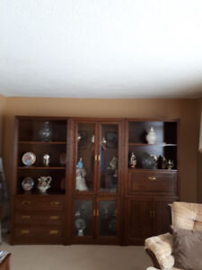 3 Section Wall Unit (Moving Sale)