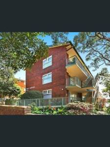 Renovated Studio Apartment 11/8 Campbell Pde Manly Vale